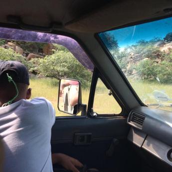 Field trip game drive